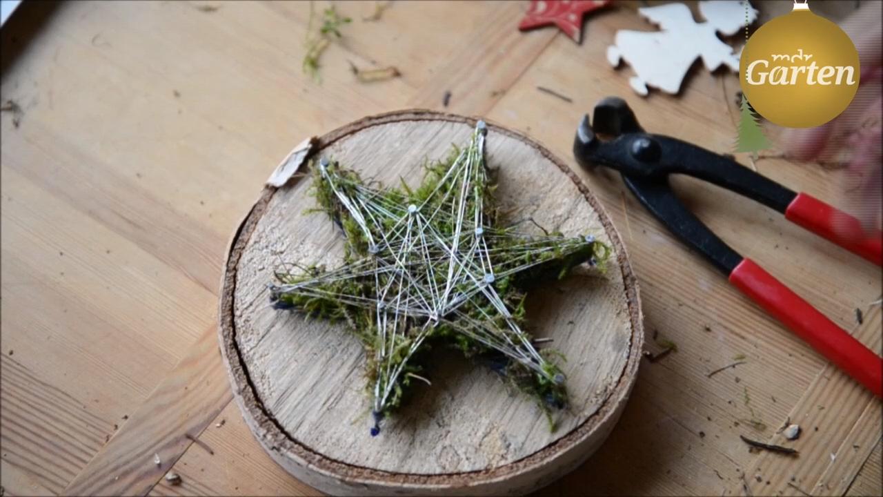 Deko für den Winter: Baumscheibe mit Moos-Stern