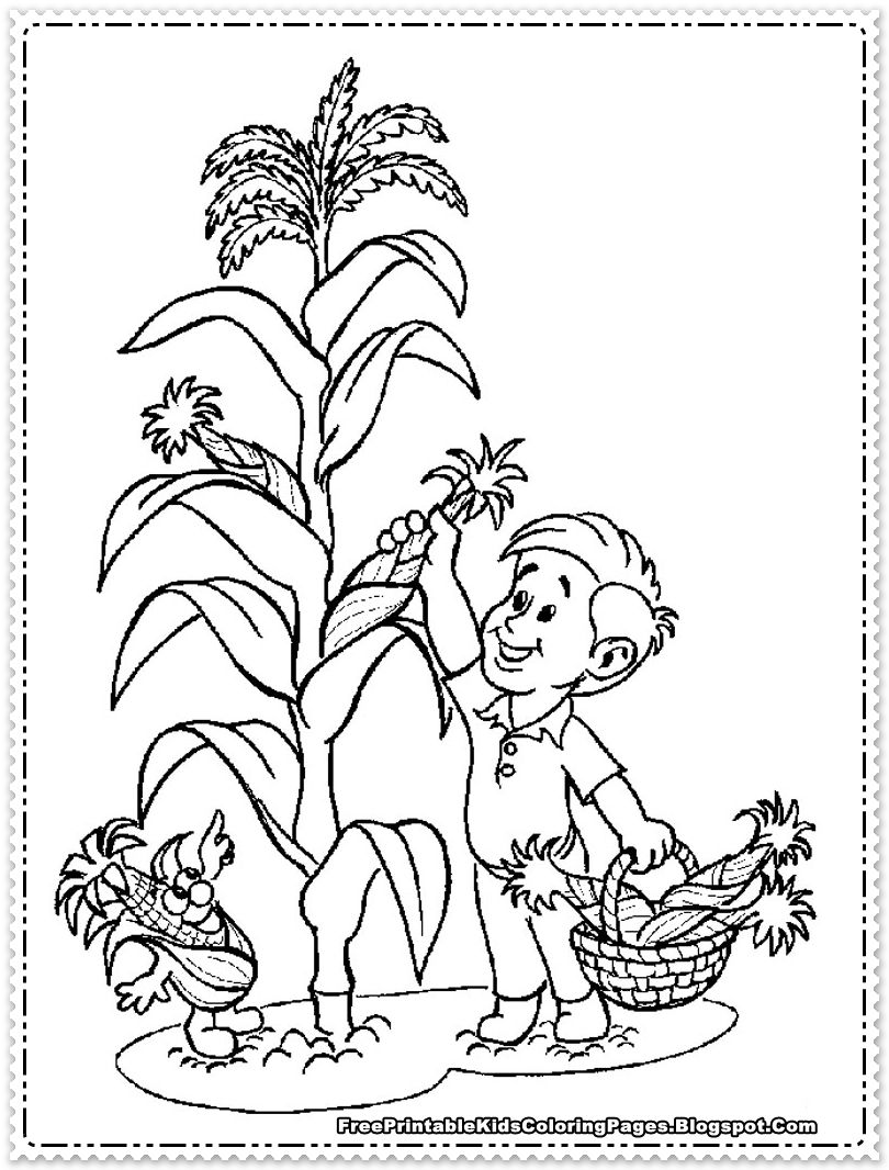 Corn Coloring Pages Printable Planta De Maiz Dibujos Maiz Dibujo