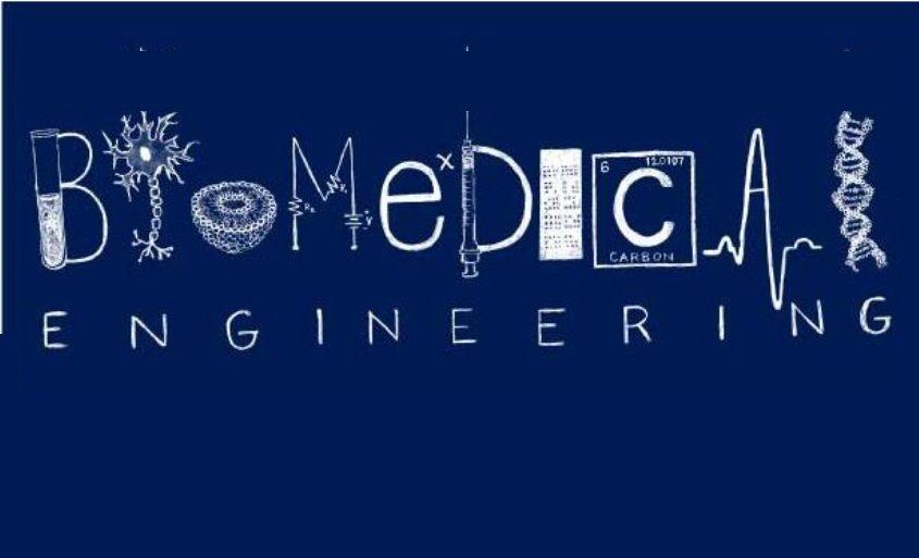 Careers In Biomedical Engineering  Job Duties  Career
