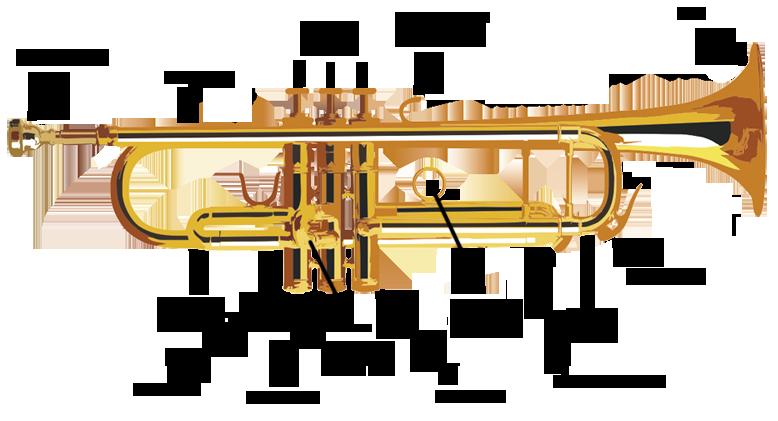 Trumpet Parts And Maintenance Trumpet Exercise Database Trumpet Parts Trumpet Music History