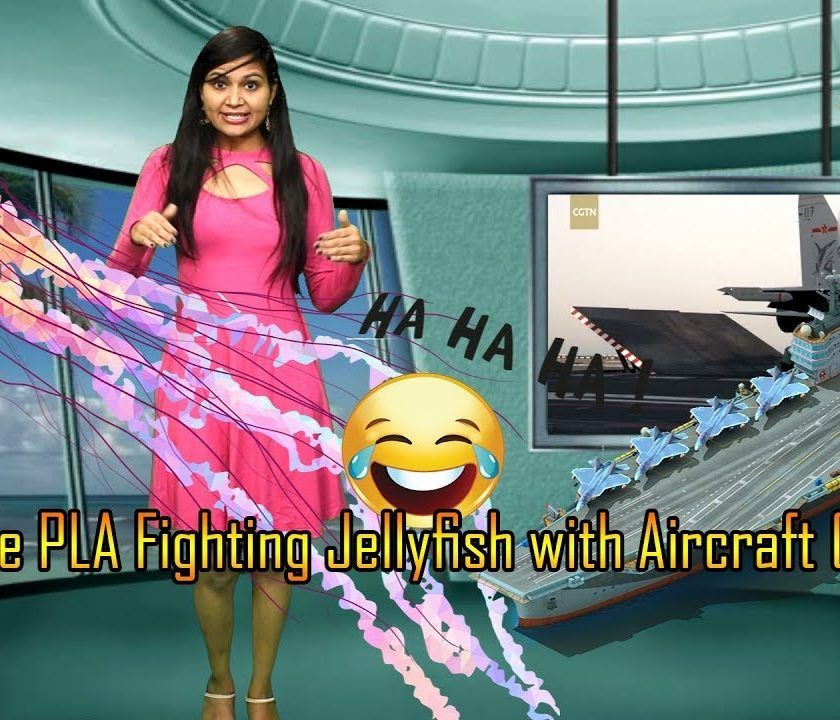Chinese PLA Fighting Jellyfish With Aircraft Carrier