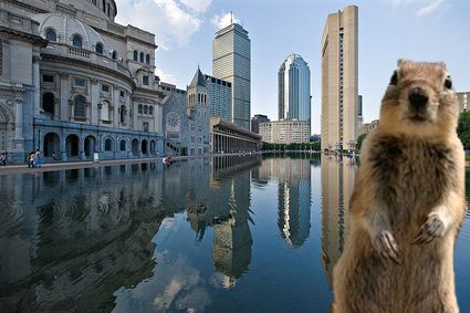 Crasher visits Boston, MA