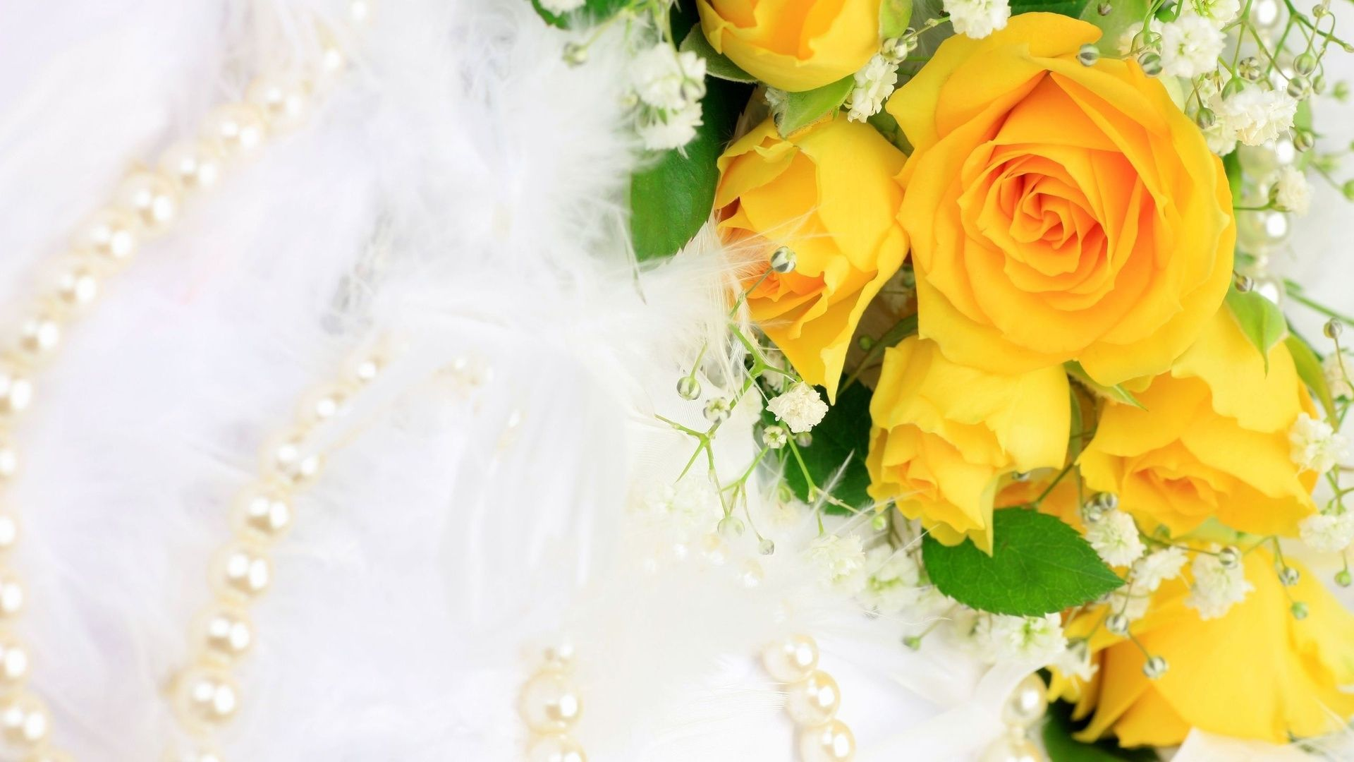 Yellow Roses Background Stock Images Image Yellow Roses Rose Background Rose