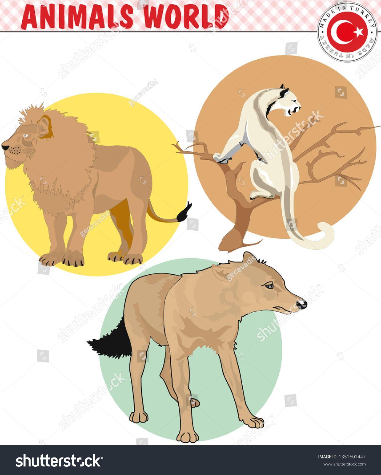 Wild Animals - eps, vector #Ad , #affiliate, #Animals#Wild#vector#eps |  Animals wild, Animals, Wild