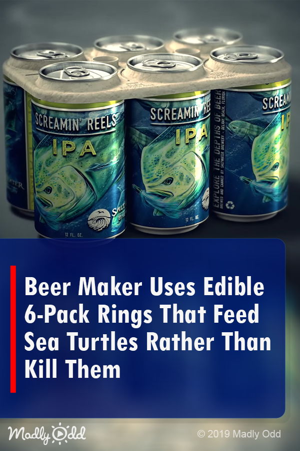Beer Maker Uses Edible 6 Pack Rings That Feed Sea Turtles Rather Than Kill Them Beer Maker Sea Turtle Animal Rescue Stories