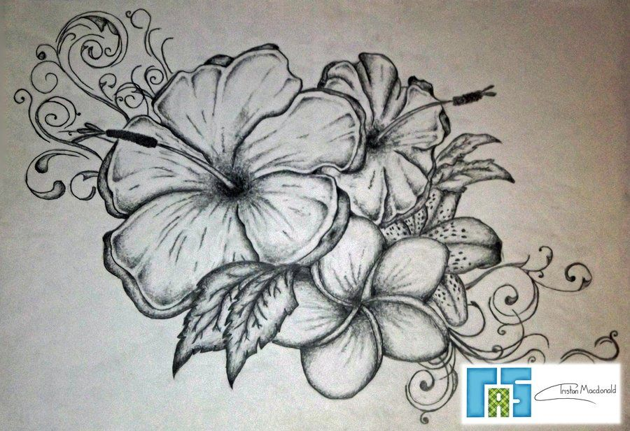 Hibiscus Tattoo Drawing: Pin By Chrissy Schwiger On Tattoos