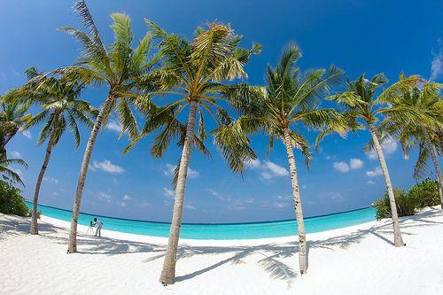 Bebe De Playa La Hermosos Paisajes Vibraciones Verano Fotos