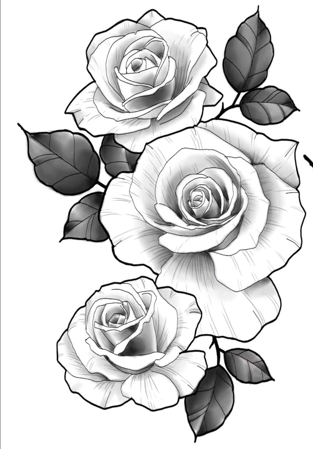 Roses Vetoe Black Label Art Co Los Angeles Usa Tatuagem