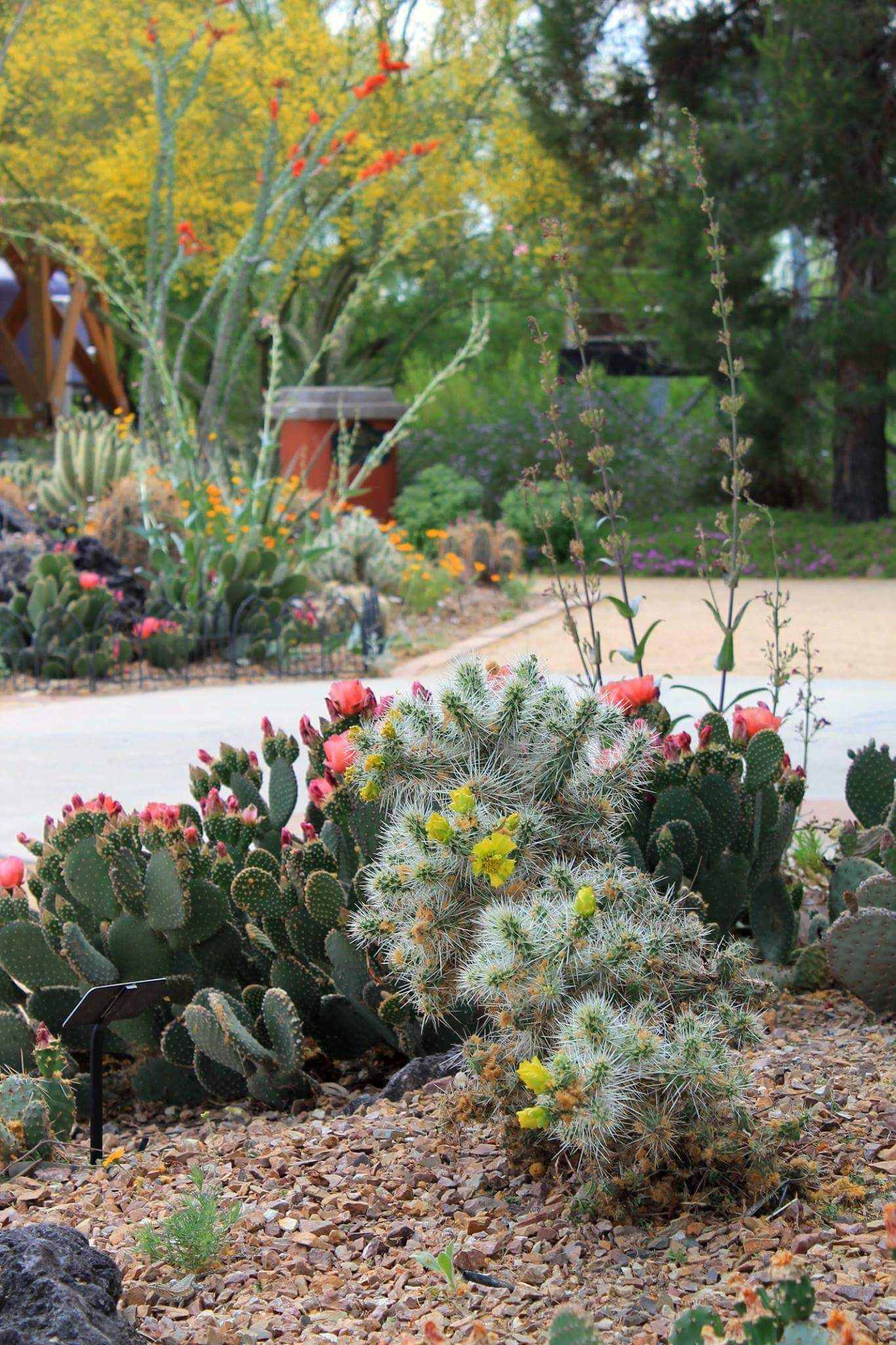 May 8, 2015 is National Public Gardens Day! Come celebrate at the Botanical Gardens at the ...