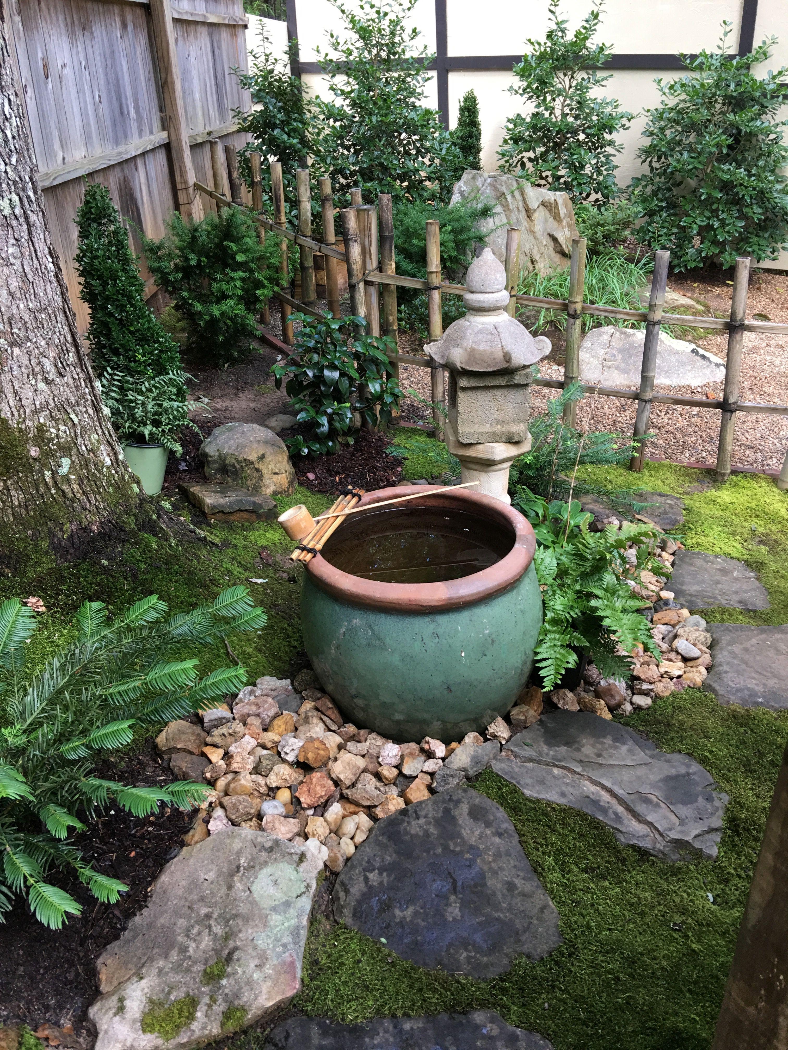 Backyard Outdoor Decor