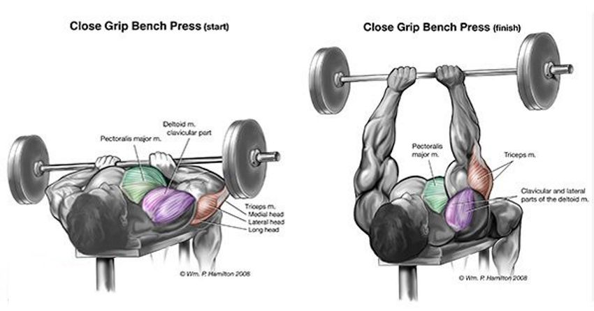 How To Gain Strength In Bench Press Part - 38: Performing The Close Grip Bench Press