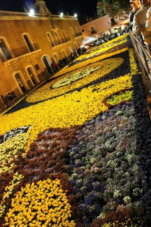 Hermosas alfombras de flores en atlixco puebla m xico Alfombras persas en mexico