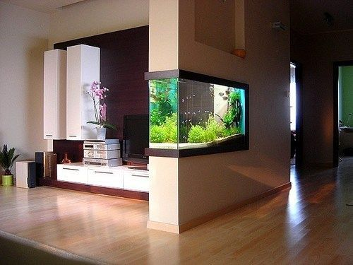 14 Diy Aquarium Ideas For Aquarists Wall Aquarium House Design