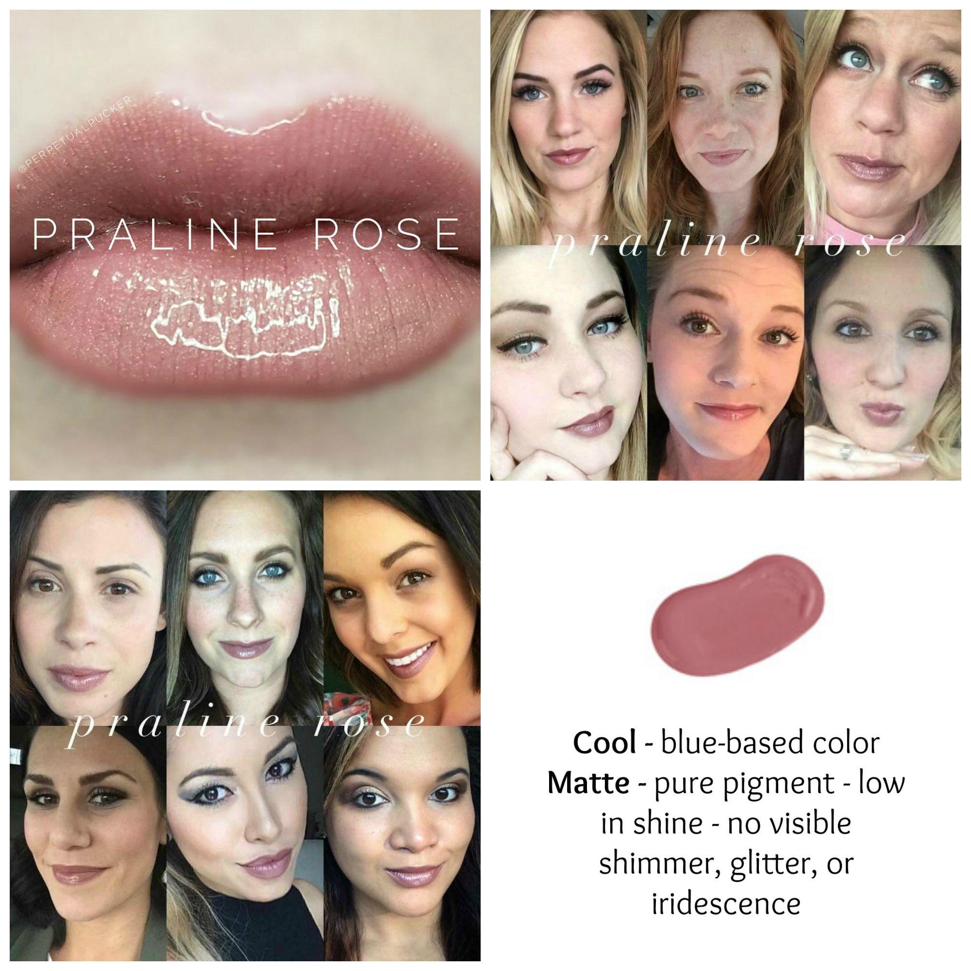 Praline Rose Lipsense Permanent Color Lipsense Color Charts In