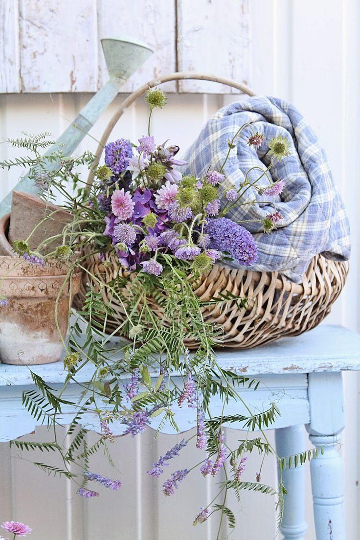 Pin Af Lotte Hagensen Pa Garden Med Billeder Blomster