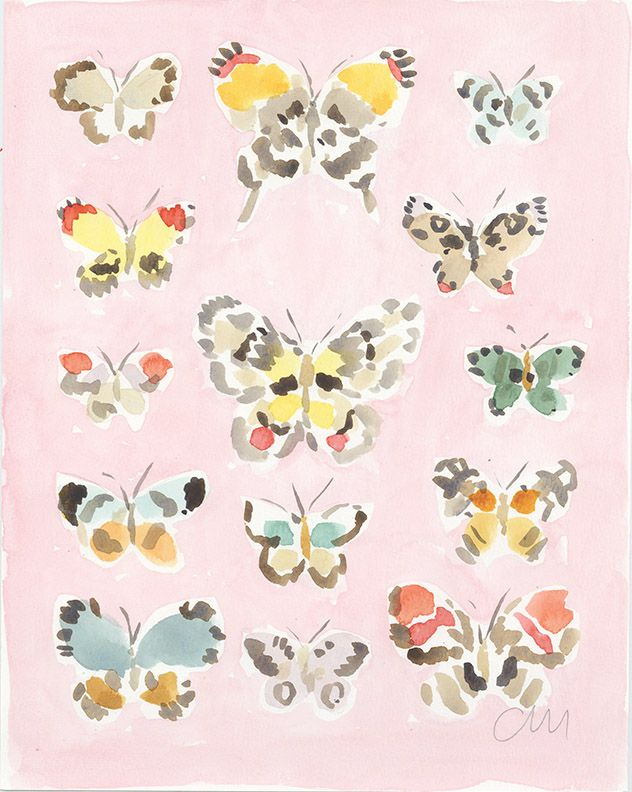 """butterfly chart. Original watercolor on paper 11""""x14"""