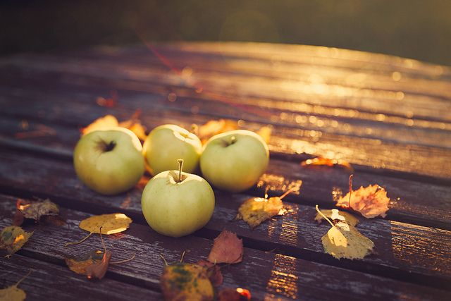 autumn leaves and harvest apples