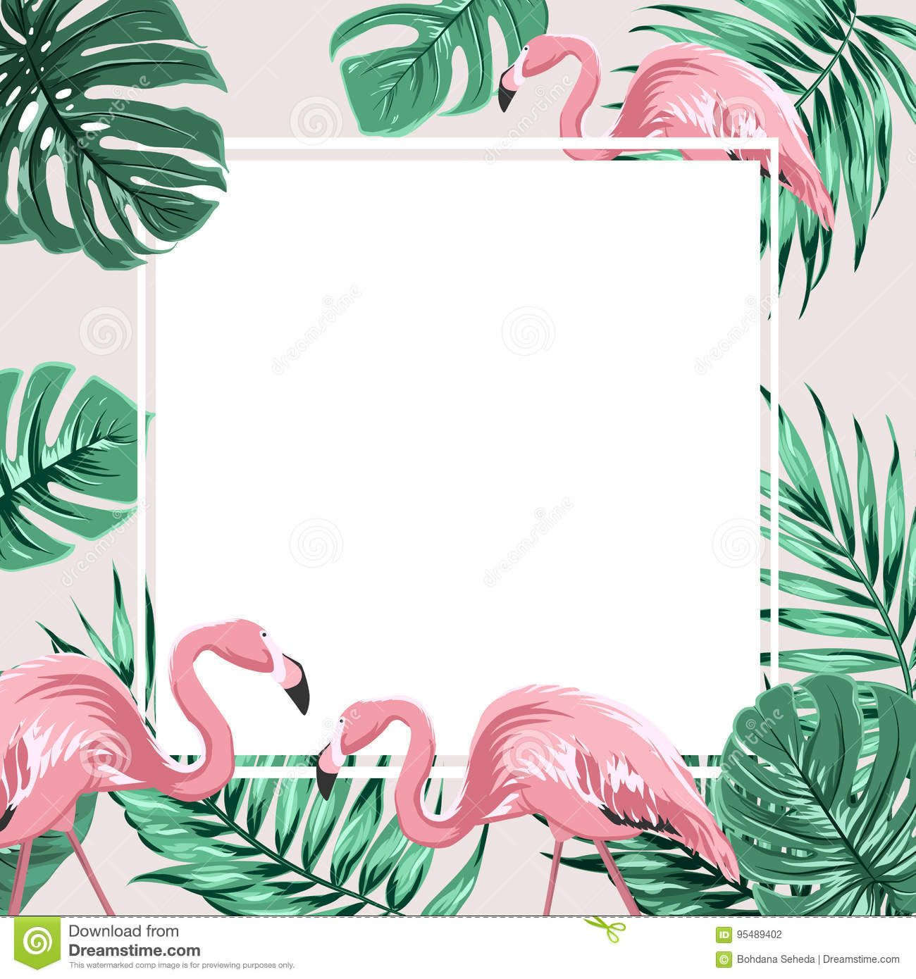 Tropical Border Frame Banner Leaves Flamingo Birds Photo About Natural Bright Branch Bird Border Tropical Frames Pink Flamingos Birds Flamingo Wallpaper