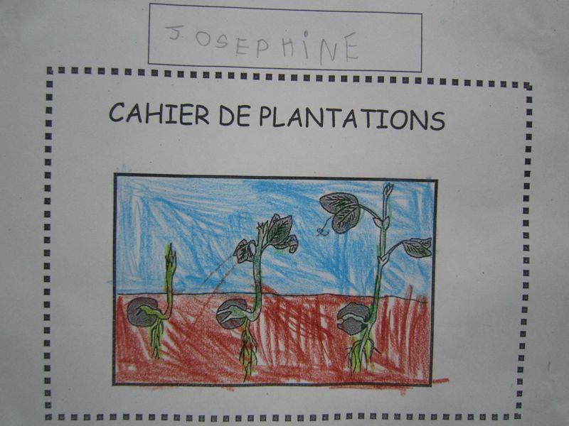 Cahier de plantations jardinons pinterest plantation for Jardinage le monde