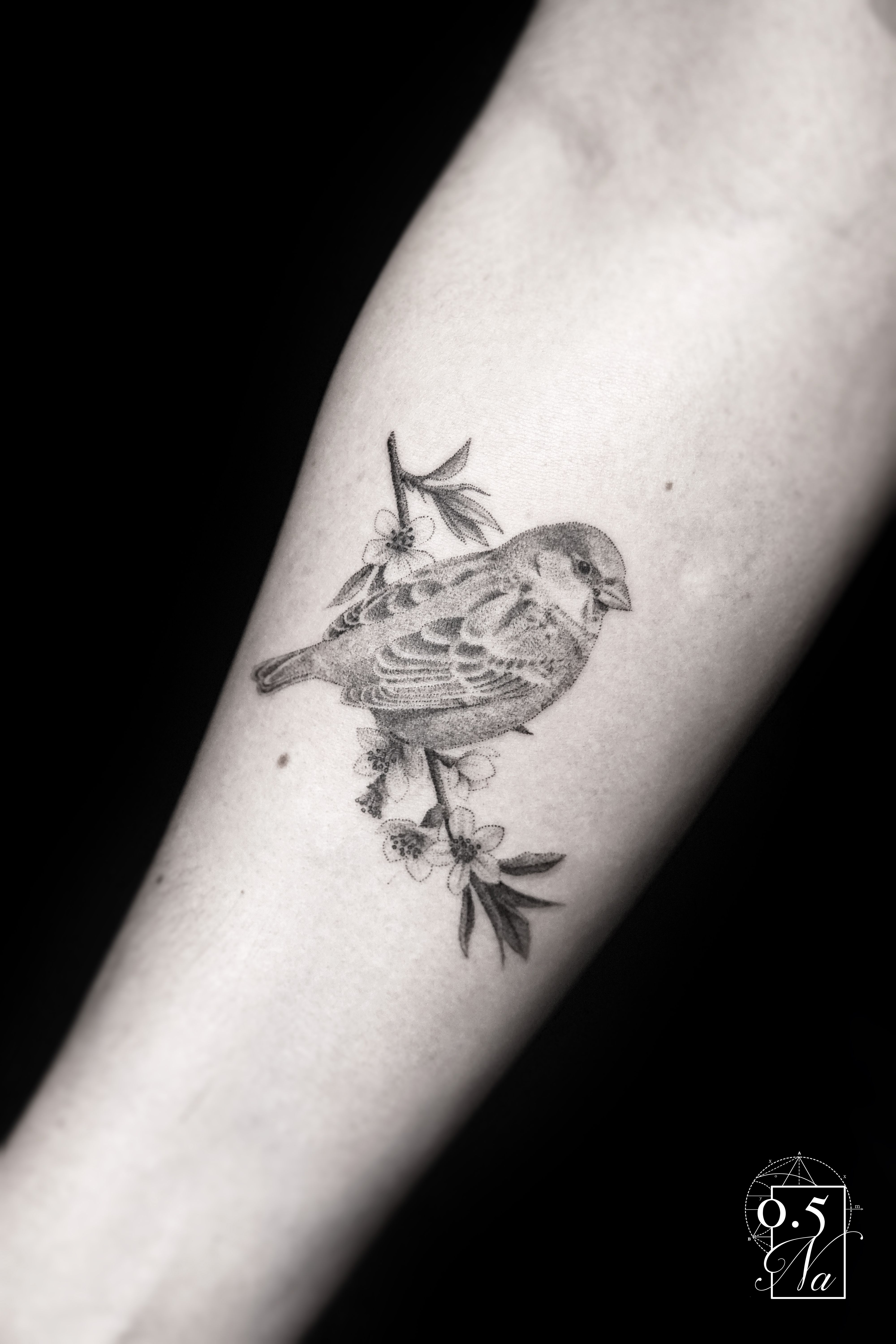 Pin By Keely Dusty Fox On Tattoos With Images Realistic Bird Tattoo Robin Bird Tattoos Sparrow Tattoo
