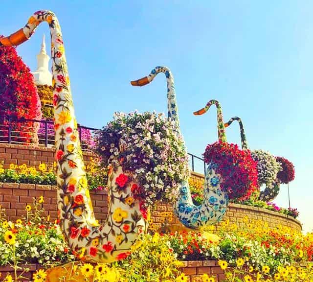 Biggest Flower Garden in the World Flower garden