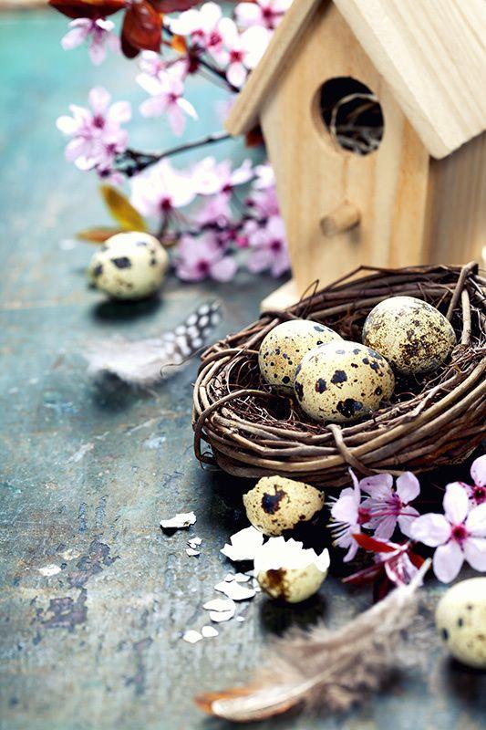 Easter by Natalia Klenova on 500px