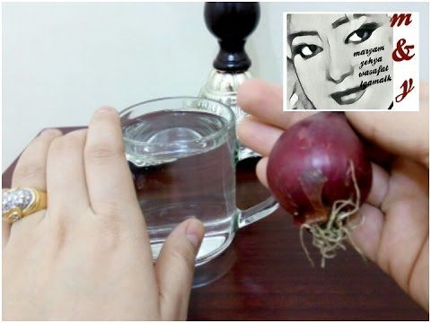 حقق حلم الوزن المثالى ببصلة تخلص من الوزن الزائد والكرش مع مريم يحيى Youtube Vegetables Radish Food