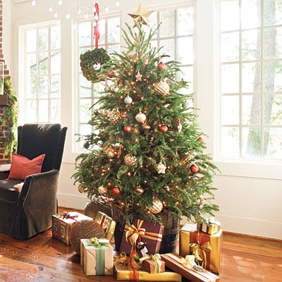 Christmas dcor  Organic and Shimmery: Skip the ubiquitous metal tree  stand, and give your tree a