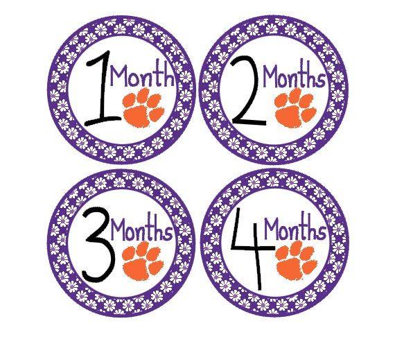 BIrthday Month Stickers - Clemson. $9.00, via Etsy.