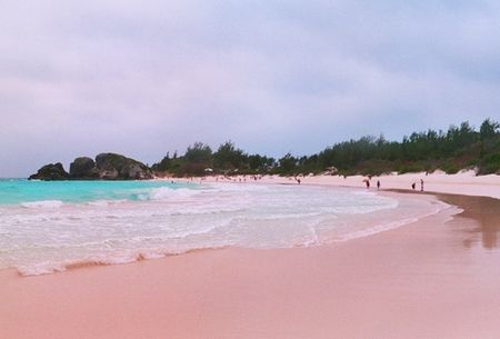 ab2ba59d76 Pink Sand Beach. Horseshoe Bay, located on the island of Bermuda, is a  stunning beach known for its pale pink sands and excellent snorkelling.