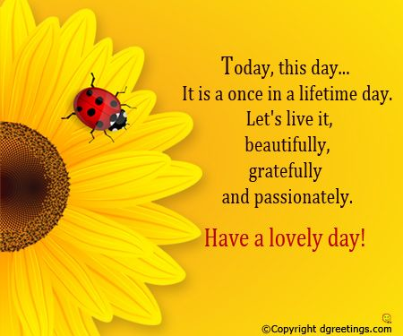 Today This Day It Is A Once In A Lifetime Day Good Morning Card Good Morning Cards Monday Morning Quotes Good Morning Quotes