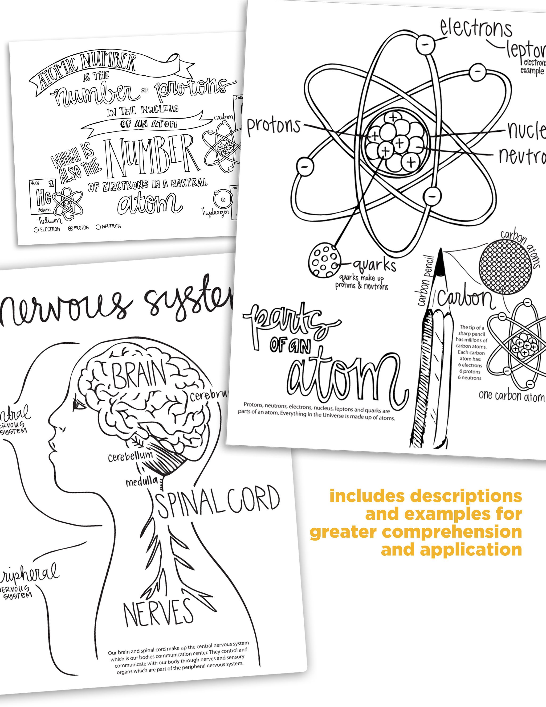4th Edition Cycle 3 Science Coloring Pages Coloring Pages How