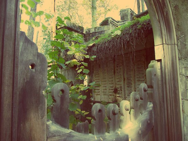 jardinstropicale