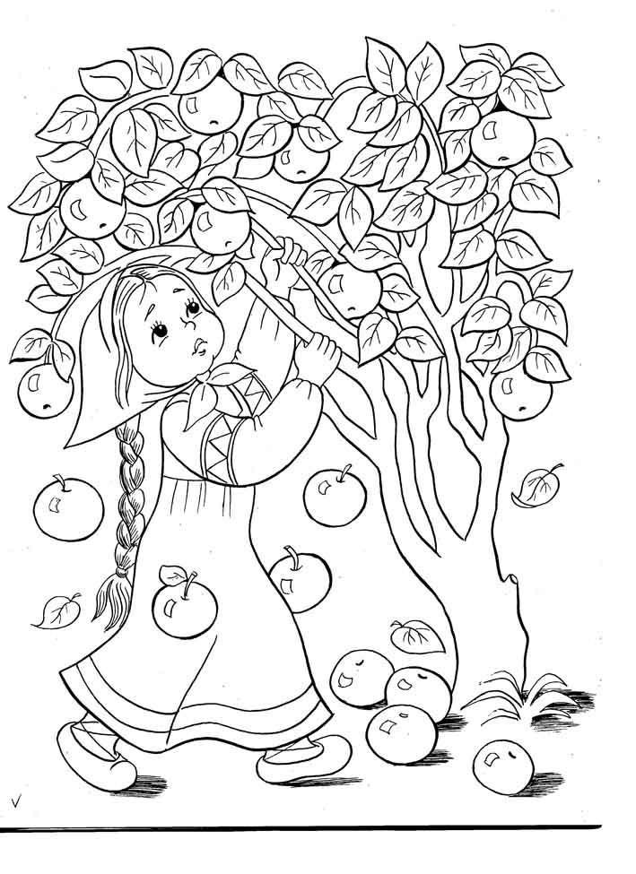 Девочка стряхивает яблоки с яблони чтобы потом их собрать ...