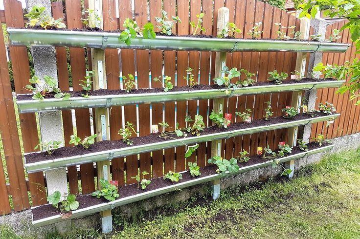 Diy Vertical Garden Wall Design For Indoor And Outdoor Usage Vertical Garden Diy Vertical Garden Garden Wall Designs