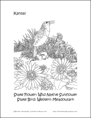 Kansas Printables Kansas State Bird and Flower Coloring Page