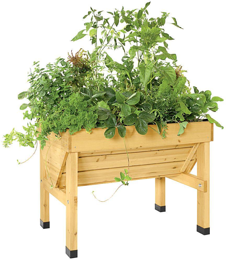 Compact VegTrug Patio Garden   Convenient Elevated Raised Bed ...