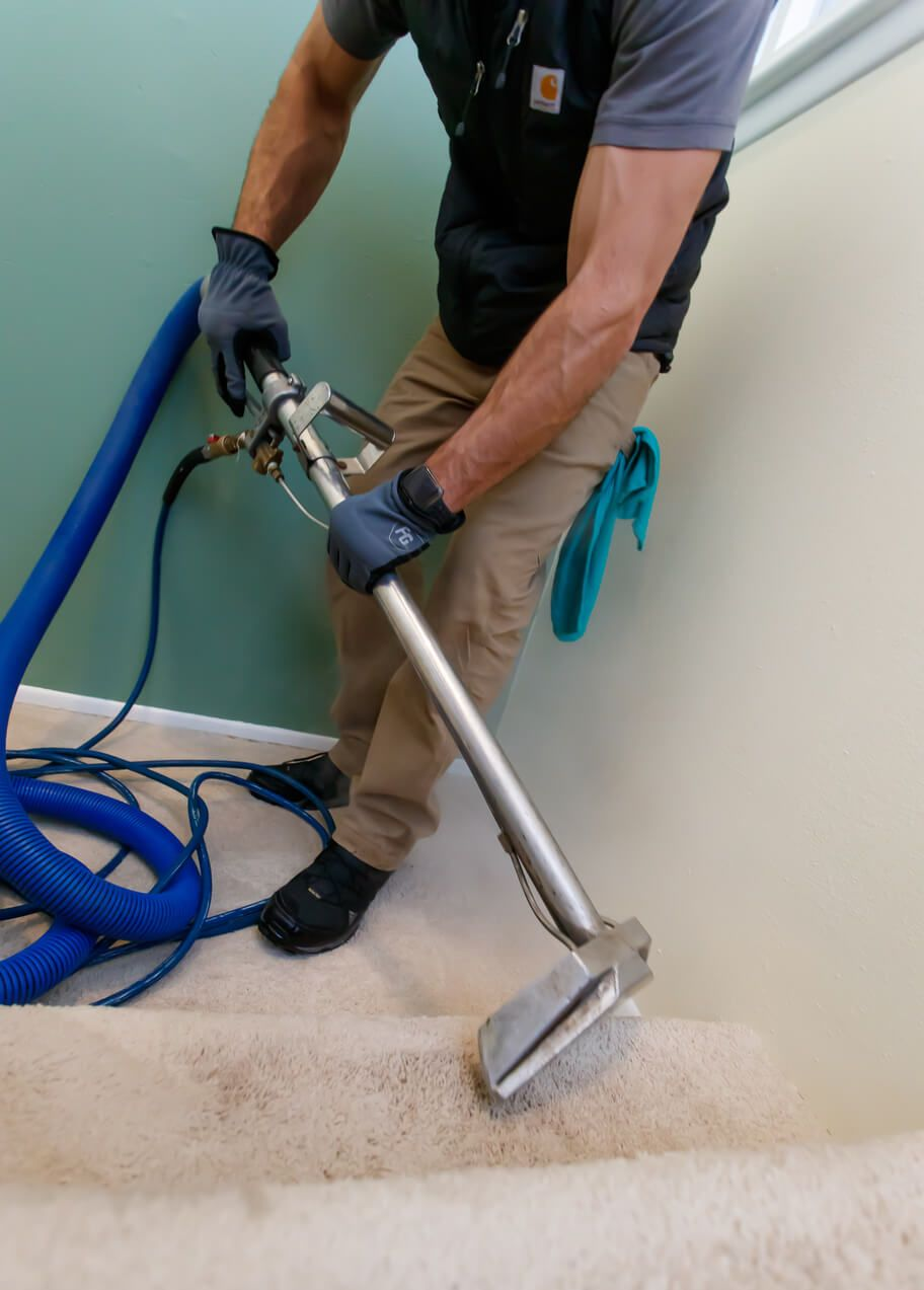 20 Pics Carpet Cleaning Company Denver And View Feels Free To Follow Us In 2020 How To Clean Carpet Carpet Cleaning Company Cleaning Companies