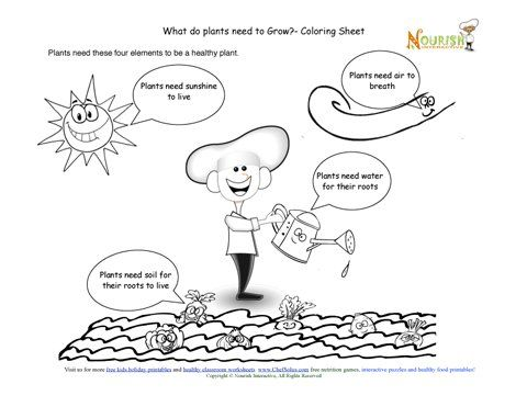 chef solus four elements that all plants need learning and coloring sheet farm sustainable. Black Bedroom Furniture Sets. Home Design Ideas