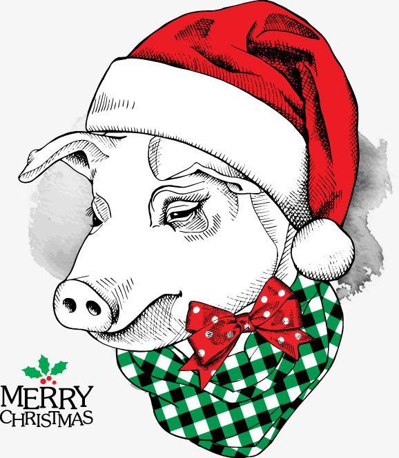 Pig Clipartdecorationvectorchristmasgreeting Cardspigchristmas