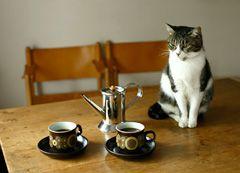 コーヒーメーカー | 私のロングライフ | 「HEBELIAN」誌 連動コンテンツ