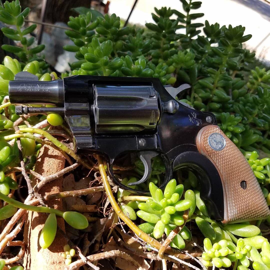 Best Handguns You Will Ever Need Hand guns Hand guns
