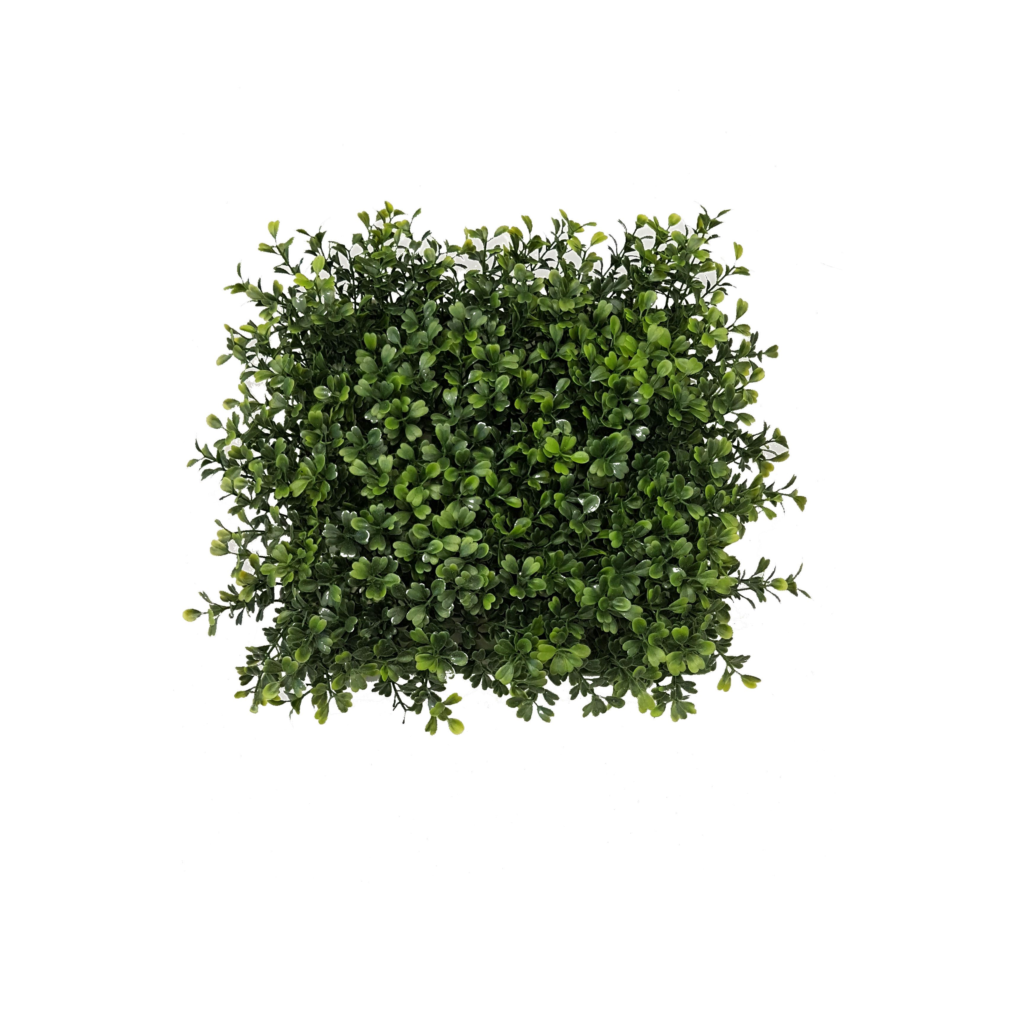 DELUXE BOXWOOD HEDGE 45CM TALL x 1M WIDE | Wyer Haus Bar | Pinterest ...