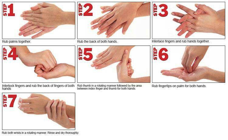 7 Steps Handwashing Hand Hygiene Proper Hand Washing Hand