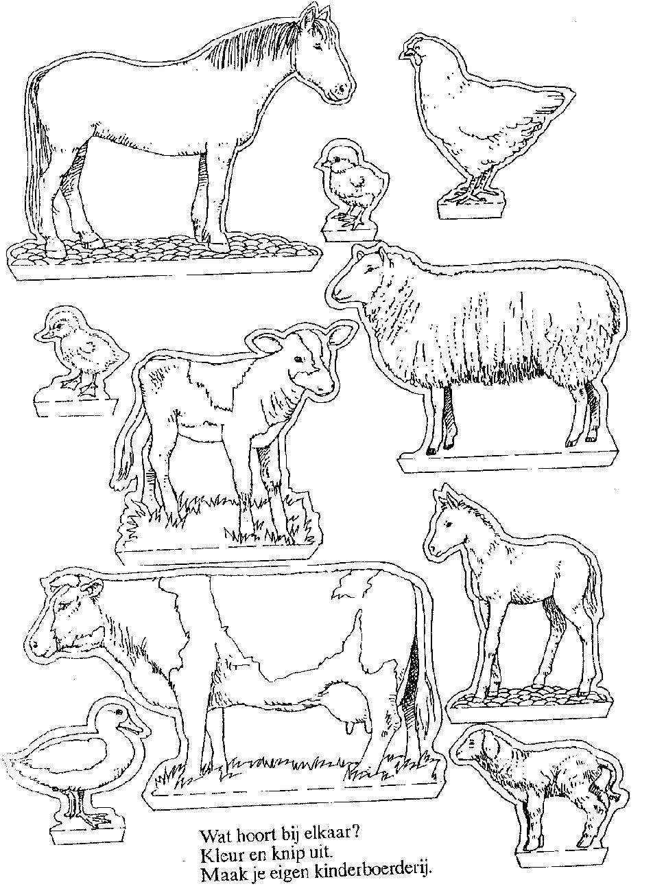 Kleurplaten Kijkdoos Paarden.Maak Een Mooie Kijkdoos Met Boerderij Dieren