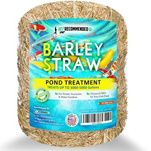 Summit 130 Clear Water Barley Straw Bales 2 Packs Of 2 4 Total Fish Ponds Natural Pond Pond
