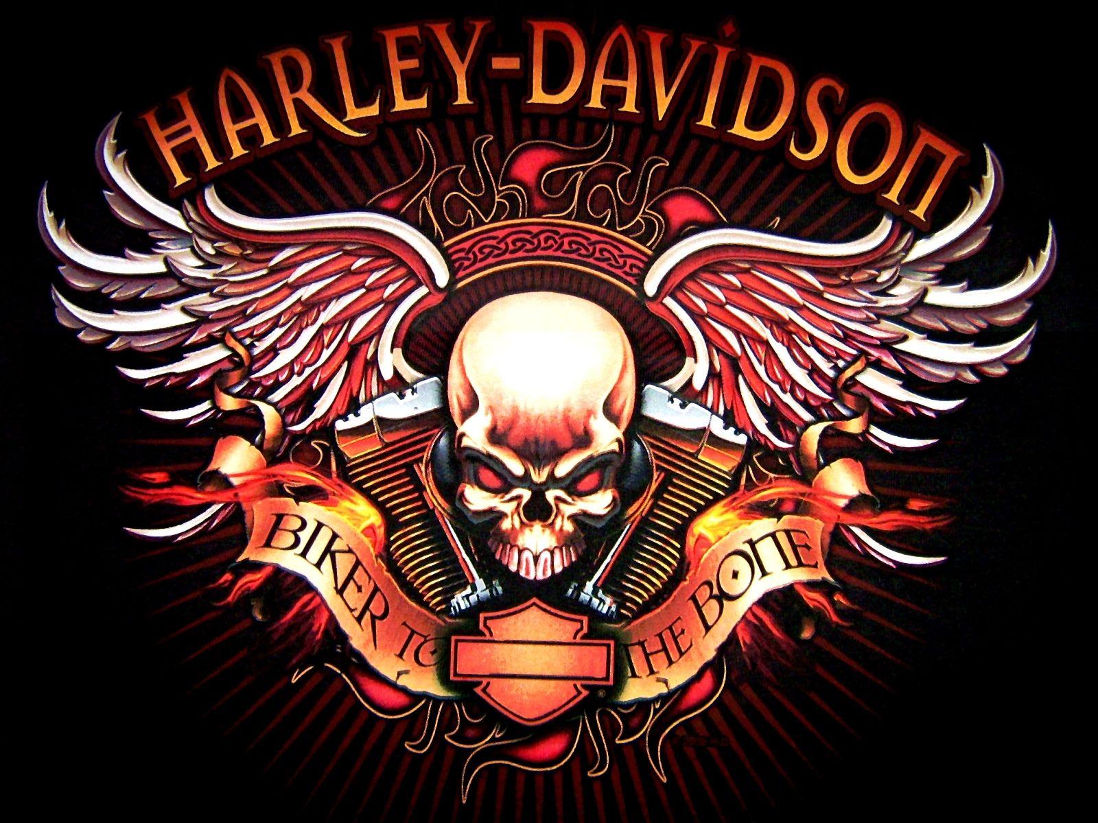Hd skull wallpapers harley davidson logo skull bikes motorcycle wallpaper background