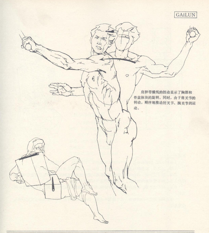 人体造型基础——人体基本结构的概括 - 水木白艺术坊 - 贵阳画室 高考美术培训