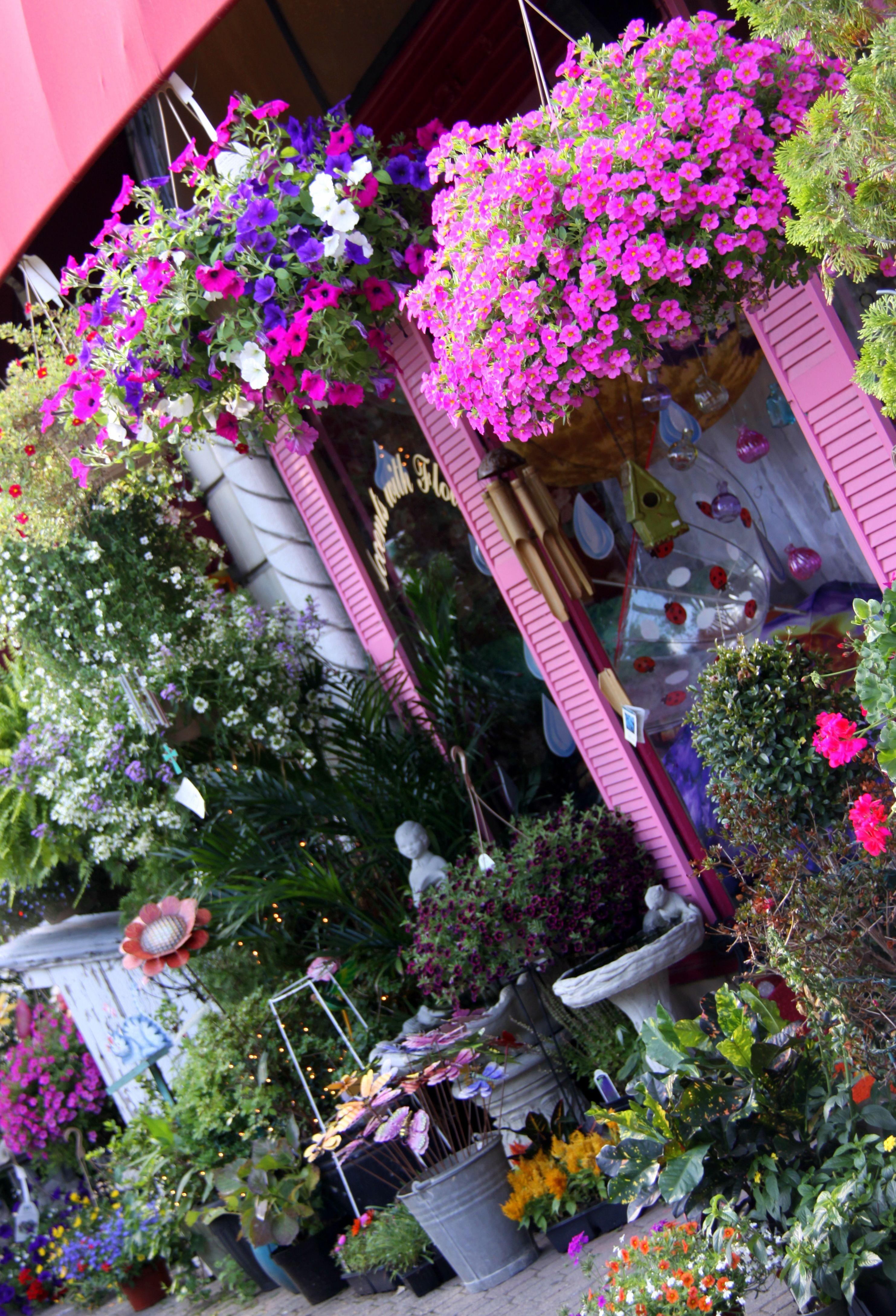 The perfect flower shop, Montclair, NJ Flower shop