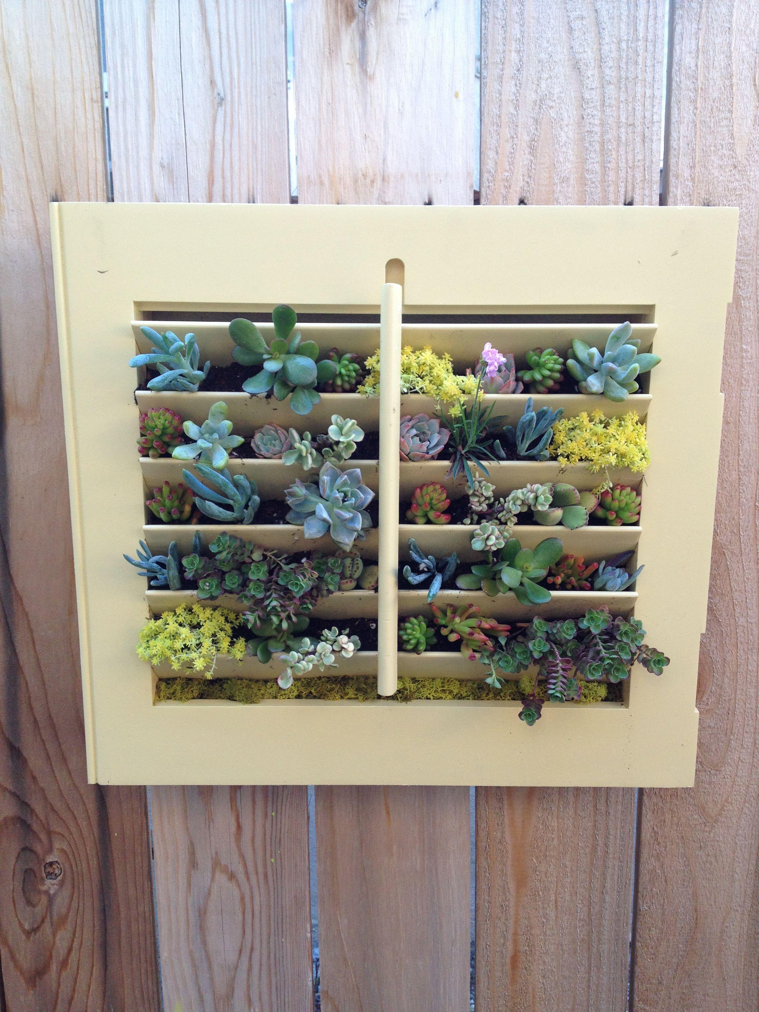 Vertical Garden Repurposed Vintage House Window Shutter